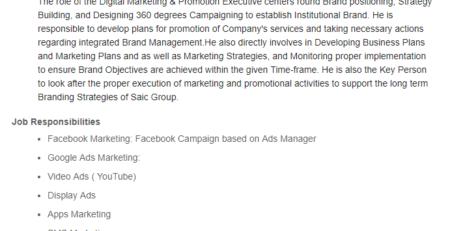 Executive Assistant Executive, Digital Marketing & Promotion